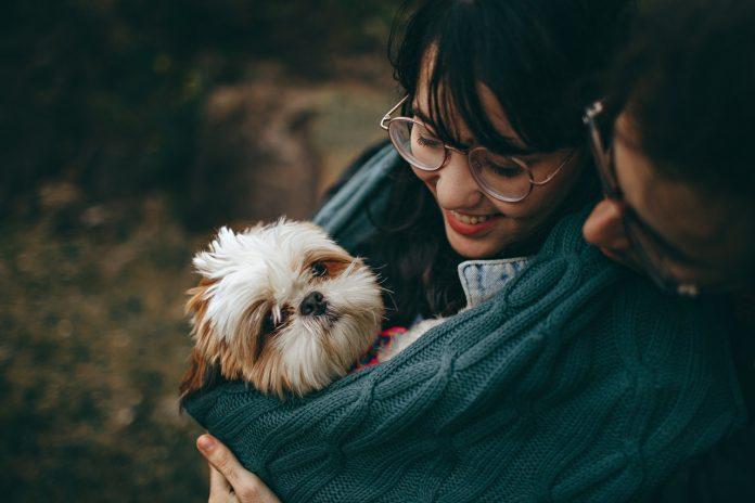 honden liefhebber