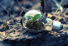 milieubewust leven